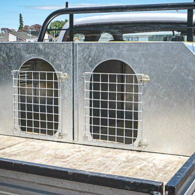 Double dog box